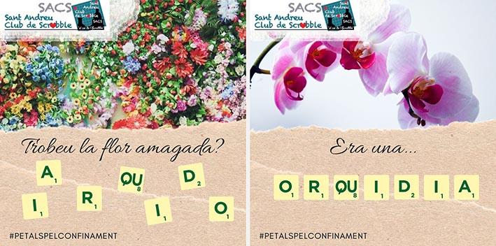 anagrames COVID19 scrabble català